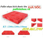 Pallet nhựa 1200x1200mm