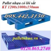 Pallet nhựa lõi sắt PL704-LS